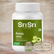 """""""Амла"""" от """"Шри Шри Таттва"""", (500 мг) 60 табл (Sri Sri Tattva Amla)"""