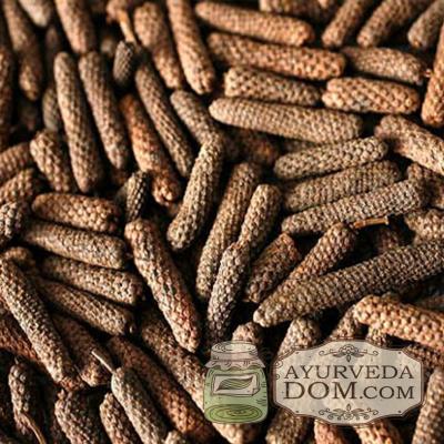 """Пиппали цельный упаковка """"Oriental Bazar"""", 50 грамм (Piper longum )"""