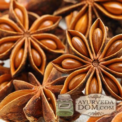 """Бадьян (звездчатый анис) целый, упаковка """"Oriental Bazar"""", 50 грамм"""